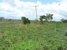 Agricultural Land for Sale in Ramada.