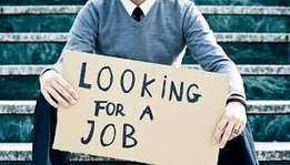 I am looking for any Business or IT job