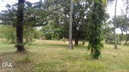 ID 5677 PRIME 5 acres plot for sale in utange with clean title