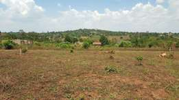 Land For Sale in Gayaza Busukuma - Zirobwe Road