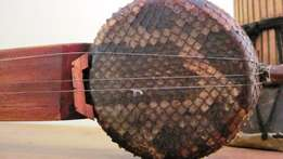 Indonesian Lute made of Cobra skin