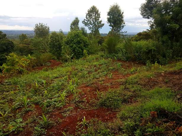 Red soil - 50 by 100 acre plot of Land in Upper Matasia Ngong Township - image 6