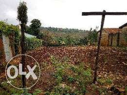 50*100 residential plot for sale