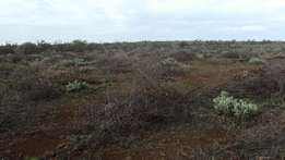 100 x 100 (quarter acre) Plots for sale in Maroroi Ngong