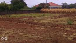 PRIME 1/2acre for sale MUTHAIGA NORTH
