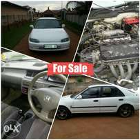 Hond for sale