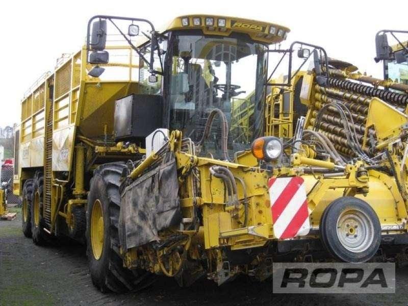 Ropa Euro-tiger V8-4b - 2014 - image 2