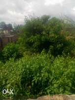 land for sell in okpanam