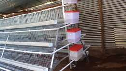 Poultyr Cages