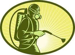 fumigation/pest control services in Nairobi-eXpest