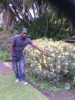 Am looking for a job as a gardener,housekeeper,housecleaner apaintingg