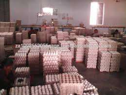 Best quality fresh table eggs Brown and white eggs