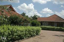 2 Bedroom Furnished Guesthouse to let in Muthaiga North