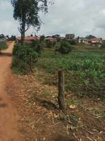 11 acres in kasangati at 180m each