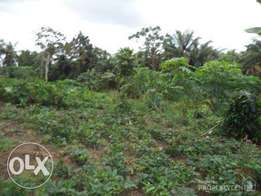 A Plot of Land for sale at Abule Coker (Orogan Village) IFO