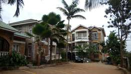 Generous luxury apartment in Bweyogerere at 700k