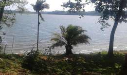 2 acres on sale touching lake shore at Bwerenga bugiri entebbe