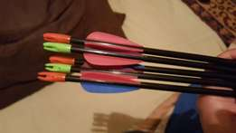 Easton trooper target arrows