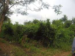 200 acres of land on sale in luwero-kakoge at 2m per each