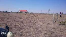 Prime 10 Acres Land at Sholinke Town,50 metres from the Tarmac