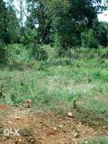 Land kuinet 77 acres too for farming 1.1m per acre