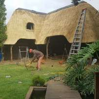 Worldwide Thatching lapas, Pools, Instant lawn,Paving and Tar surfaces