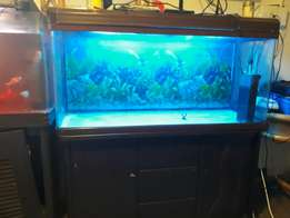1200 Jebo tank with cabinet