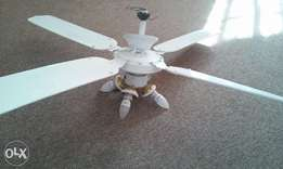 Ceiling fan and light