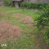 a registered plot at oyibo