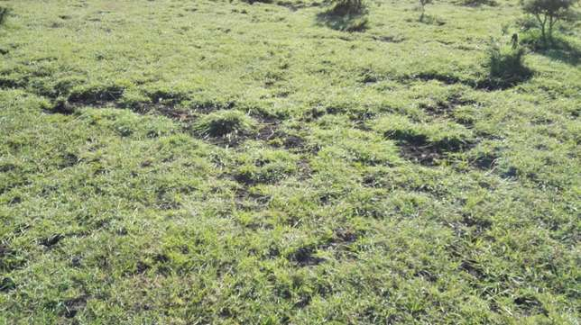 30 acres for sale in ongata rongai Ongata Rongai - image 4