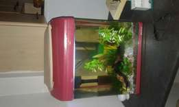 Bout tank for sale