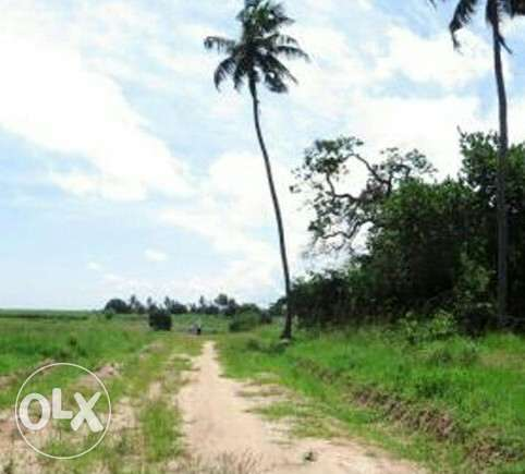 Zigira dam kinondo-south coast the entire (10acres) Diani Beach - image 3