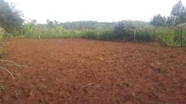 1/8 land in gikambura