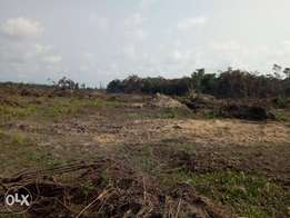 Land for sale at Eleraigbe Area