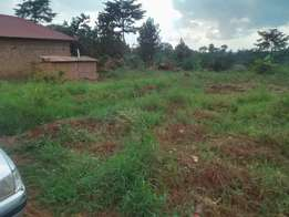 Nangabo,kasangati on gayaza road 50*100 up for sale at 45m