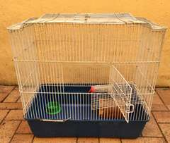 Bird Cage (or small animal)