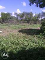 good land resonable price only 150k an eighth.