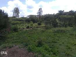 1/4 Prime Plot for Sell near Maxwell HQs -(Adventist University)