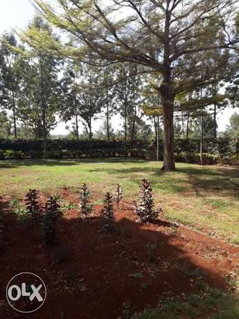Newly Refurbished Colonial Bungalow For Rent along Kamiti Road. Kamiti - image 3