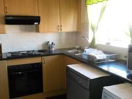 Affordable 1 bedroom apartment in Musgrave area.