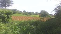 Own 1 acre and above in Malindi at just 100k