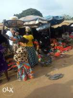 1acre of Land for Sale at Bodija Market