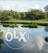 50hecters/160acres Of 1000plots Of Land With River Behind It