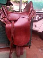 Saddle and briddle