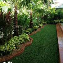 Landscaper,plants sellers,office decoration and pest controllers.