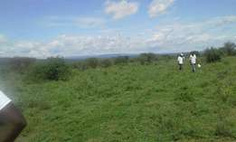 Special Offer Commercial land Acres