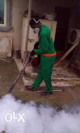 Fumigation services Lagos Mainland - image 1