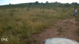 I'm selling a land or stands R45 000