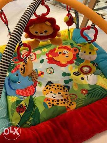 Baby Play Gym with free Beach Gym