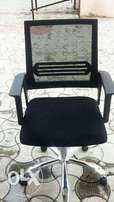 Exotic mesh office chair
